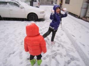 元旦雪.jpg