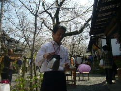az sakura.jpg